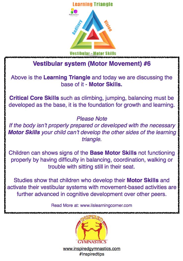 Inspired gymnastics ltd the importance of motor skill for Development of motor skills